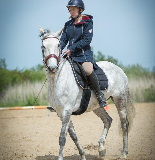 cheval blanc, Vic, Emilie, St Jean de Monts, paddock