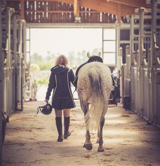 Equitation, écurie, St Jean de Monts